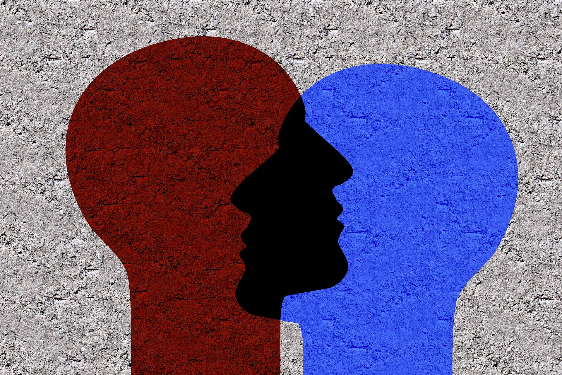 El TLP y la Personalidad Múltiple